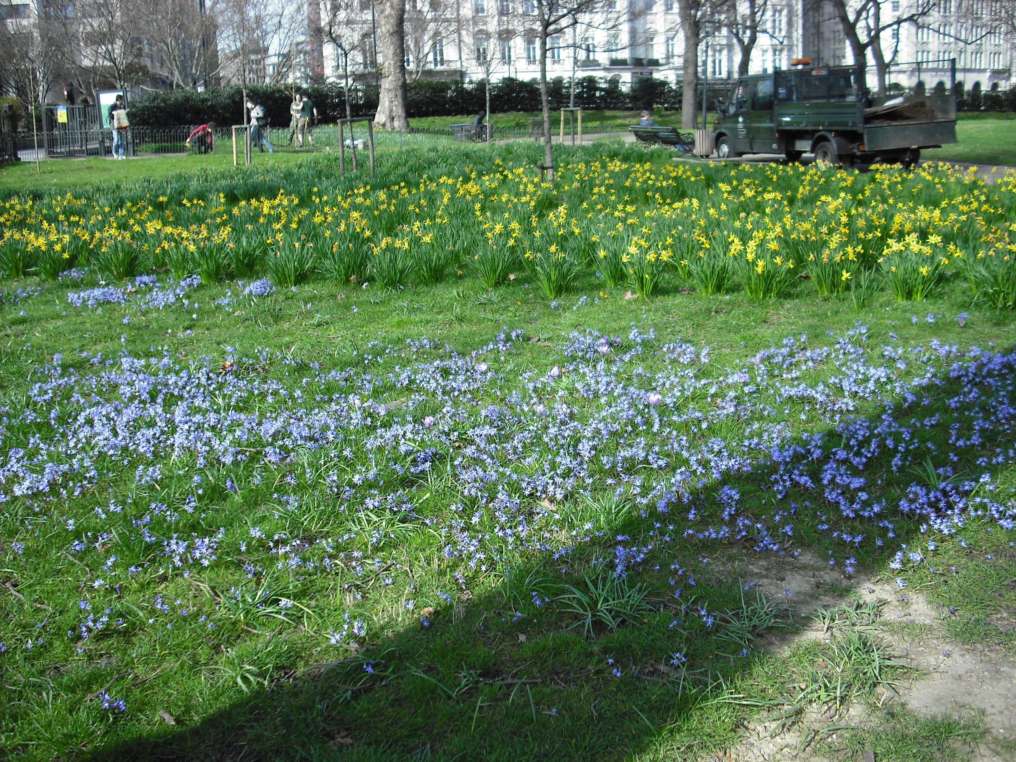 fleursgreenpark.jpg