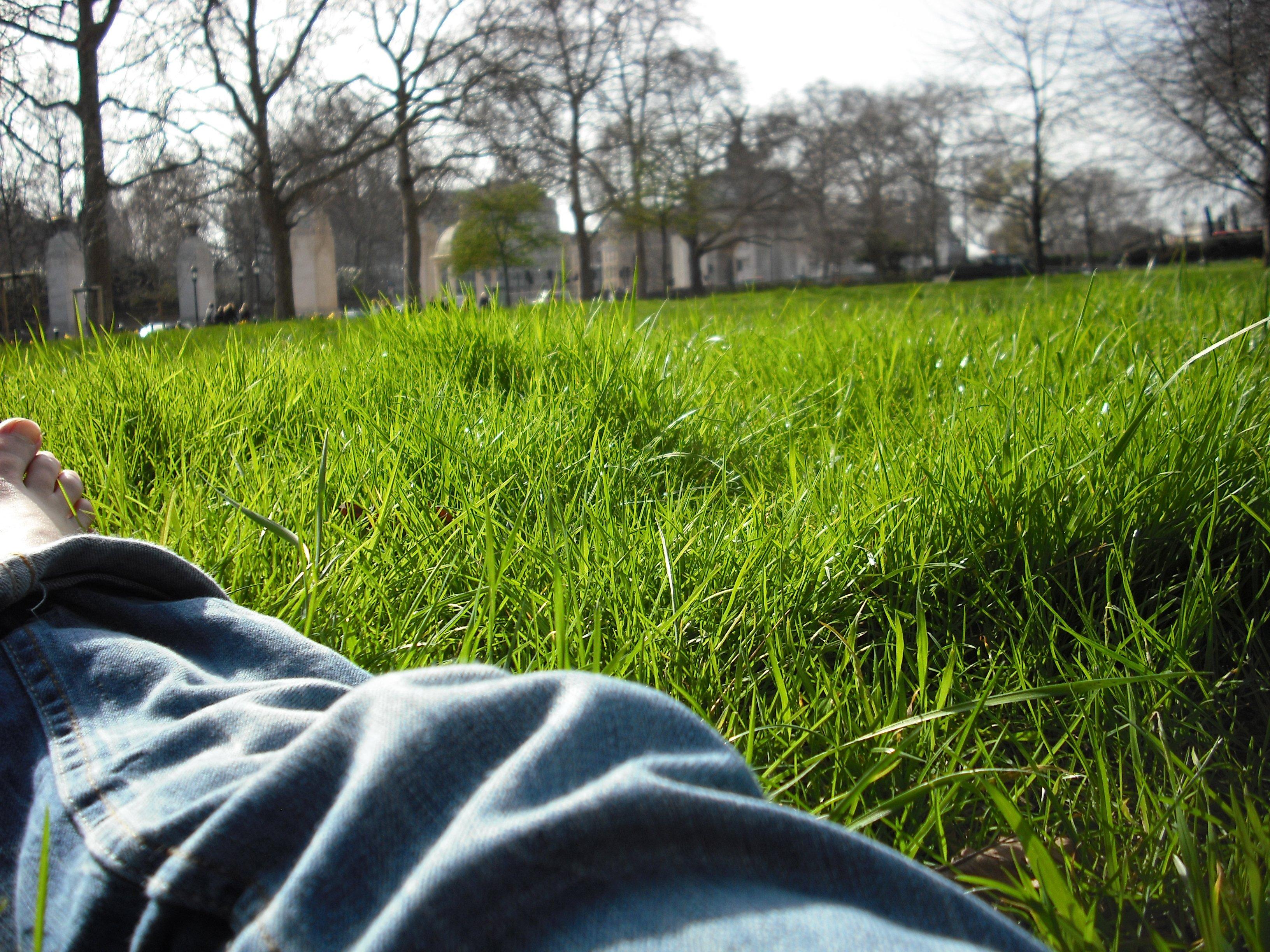 greenpark.jpg