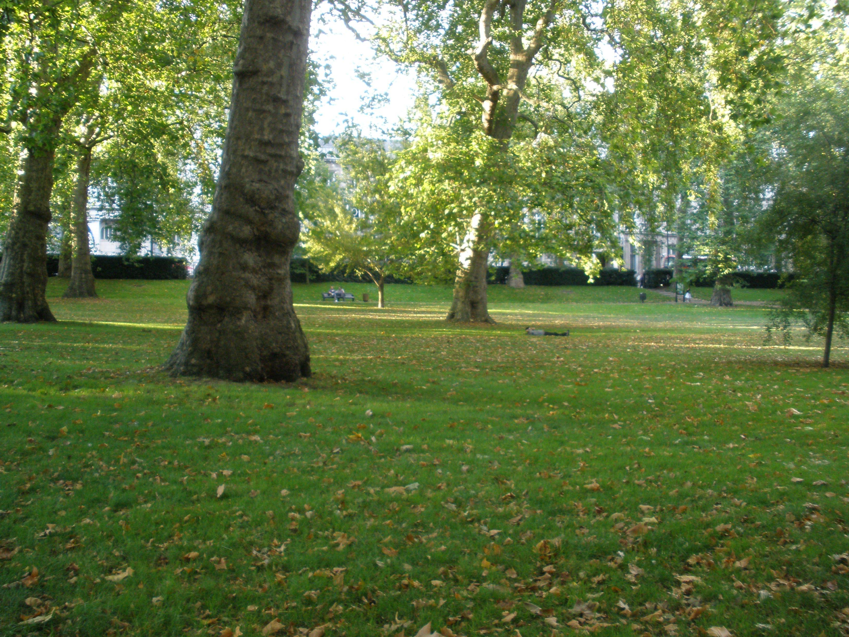 Sieste Green Park